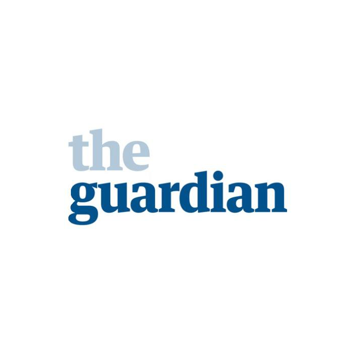 The Guardian (12.11.2015)